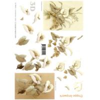 Calla,3D Bogen Le Suh A4