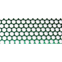 Lochband 80 mm grün