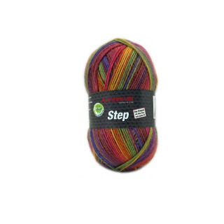 Step color Sockenwolle 100g