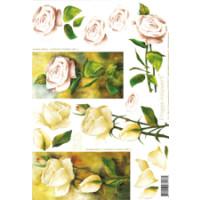 3D Bogen Le Suh A4, Rosen