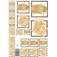 3D Bogen Le Suh A4, Rosen beige