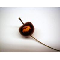 Mini-Apferl auf Draht D= ca. 3cm