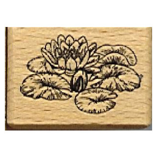 Seerose gross Massivholz