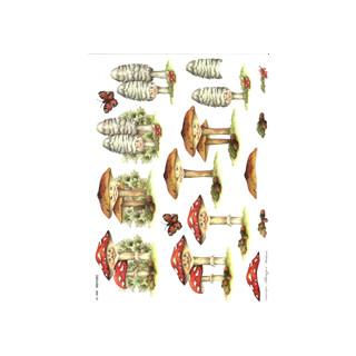 3D Bogen Le Suh A4, Pilze