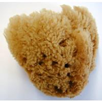 Schwamm Karibik Grass G-2  Yellow 12-15cm