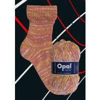 Opal Cotton Premium Pullover- u. Sockenwolle fb. 5616
